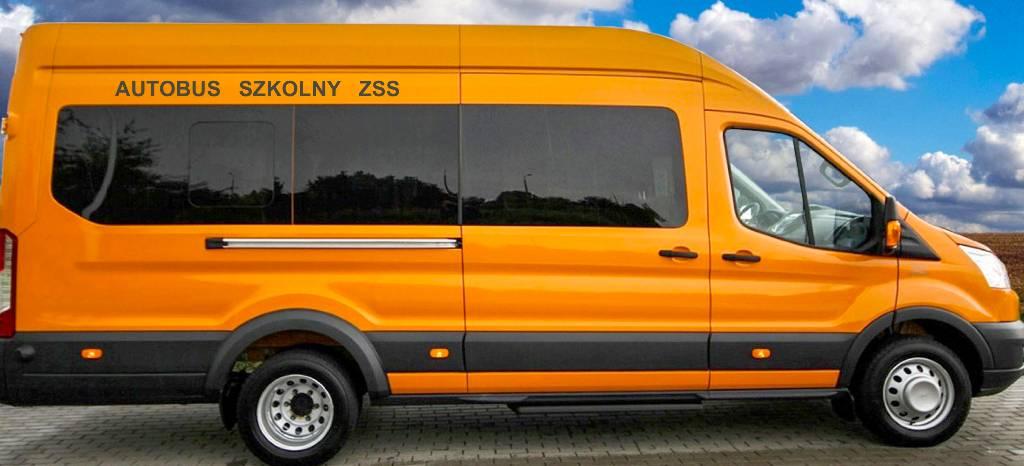 ford transit 460 school bus preis baujahr. Black Bedroom Furniture Sets. Home Design Ideas